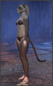 Body Markings of the Khajiit - Position 12