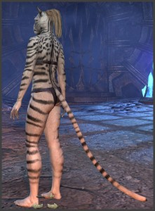 Body Markings of the Khajiit - Position 17