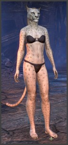 Body Markings of the Khajiit - Position 9