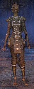 Exploring the Elder Scrolls Online - Female Argonian