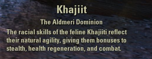Exploring the Elder Scrolls Online - Khajiit Description