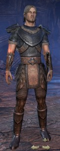 Exploring the Elder Scrolls Online - Male Nord