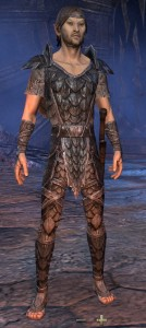 Exploring the Elder Scrolls Online - Male Wood Elf