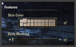 Character Creation - Features - Skin Color and Body Marking